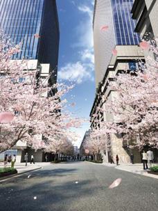 江戸桜通り(イメージパース)